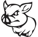 Strand_logo_pig-WEB